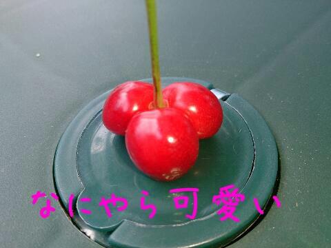 2013619111446.jpg