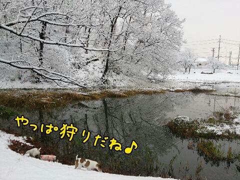 2014121582913.jpg