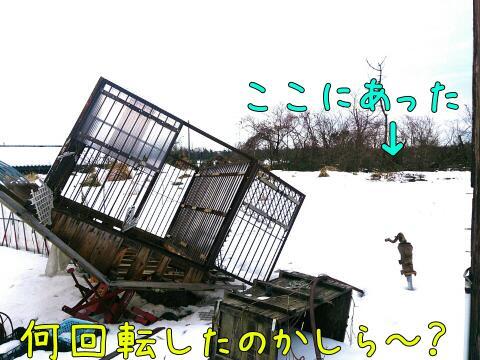 rps20141227_093133.jpg