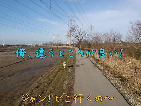rps20150124_181624.jpg