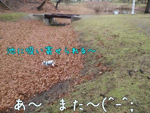 rps20160108_174205.jpg