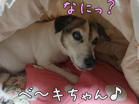 2017127193146.jpg